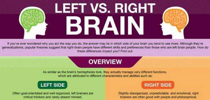 vad-är-skillnaden-mellan-höger-och-vänster-hjärnhalva