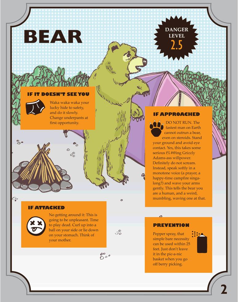 vad-göra-vid-björnattack