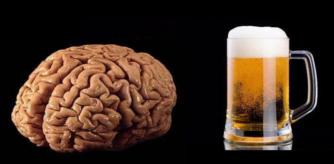 dödar-alkohol-hjärnceller