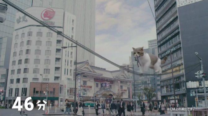 japansk-reklam-tuggumi-rolig