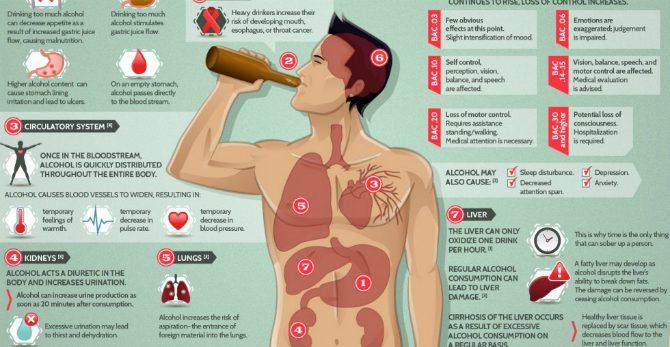 Vad händer i kroppen när man dricker alkohol