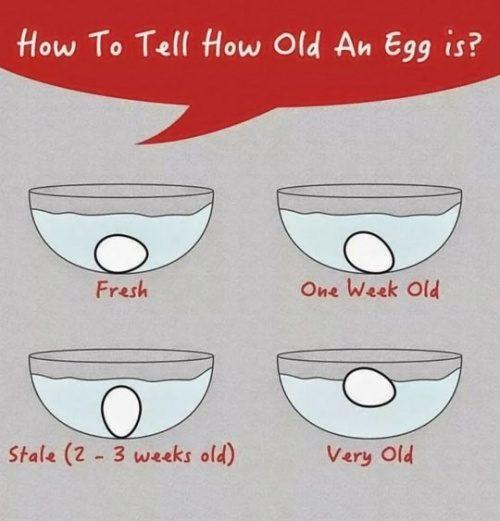 kolla om ägg är gammalt