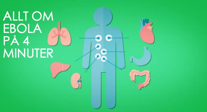 Vad är Ebola för sjukdom