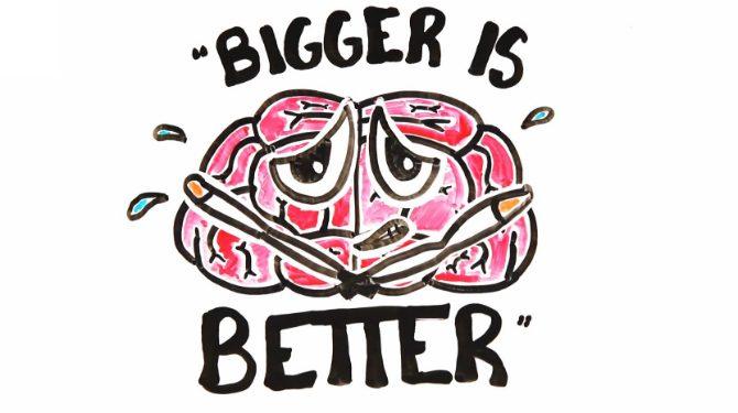 Myter om hjärnan