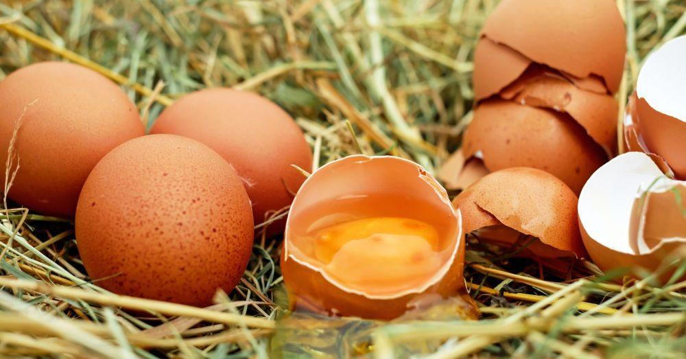 knäcka ägg enkelt utan kladd