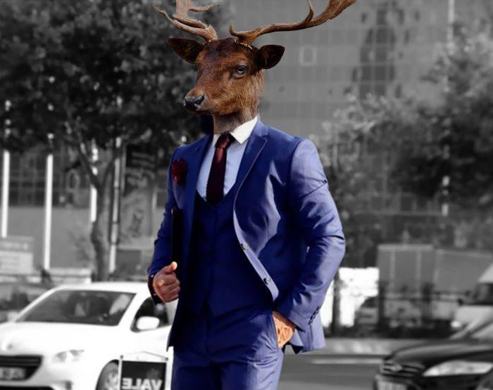 billig kostym kornblå