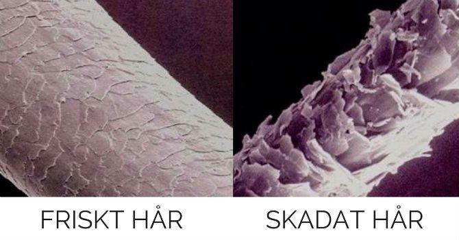 reparera skadat hår efter blekning exempel
