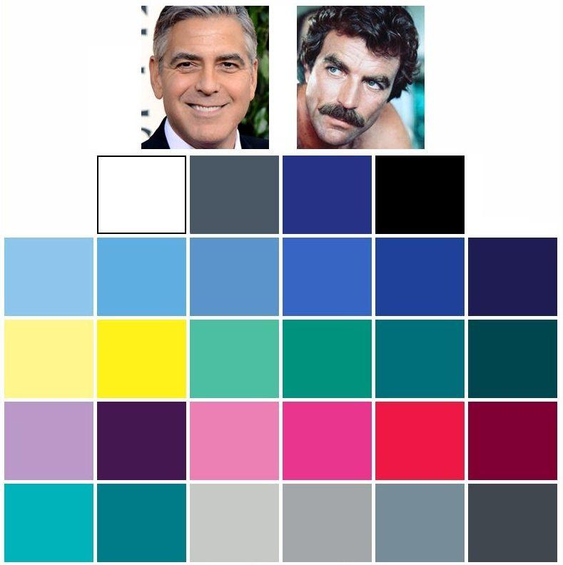 färganalys vinter färgkarta