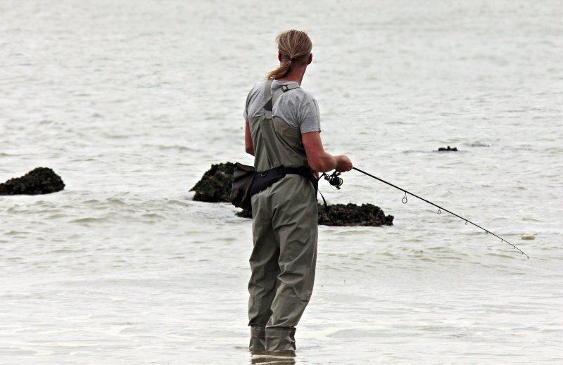 fiska må bättre hälsa