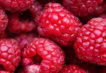 frukt med lite socker