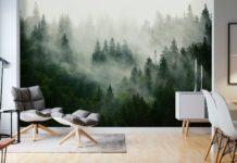 fototapet skog dimma