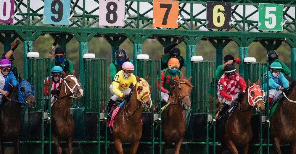 jockeys hästkapplöpning